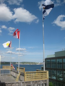 Flags SP (1)